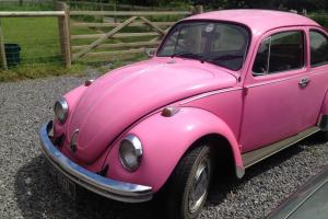 Classic 1972 Volkswagon VW Beetle Original Bubblegum Pink Tax Exempt