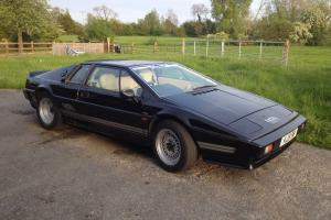 Lotus Esprit Turbo S3 Photo