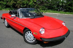 1981 Alfa Romeo Spider Veloce - EXCELLENT CONDITION, 25 YEARS OF ALL RECORDS