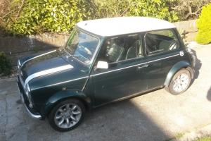 ROVER MINI COPPER