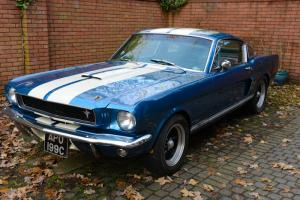 1965 FORD Mustang 289 Fastback Shelby Clone BLUE