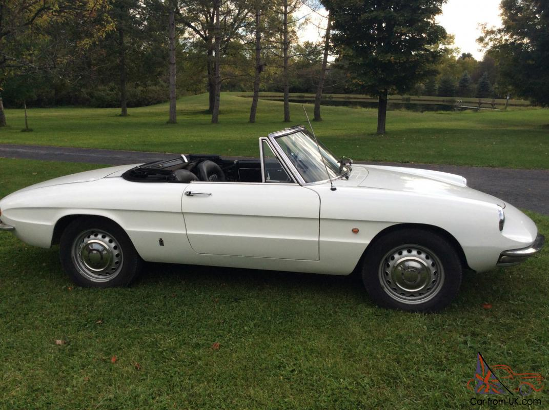 1967 Alfa Romeo Spider For Sale Duetto