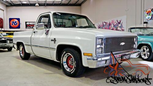 Chevy Silverado C10 Pick Up Truck Ute Suit C20 C30 Ford
