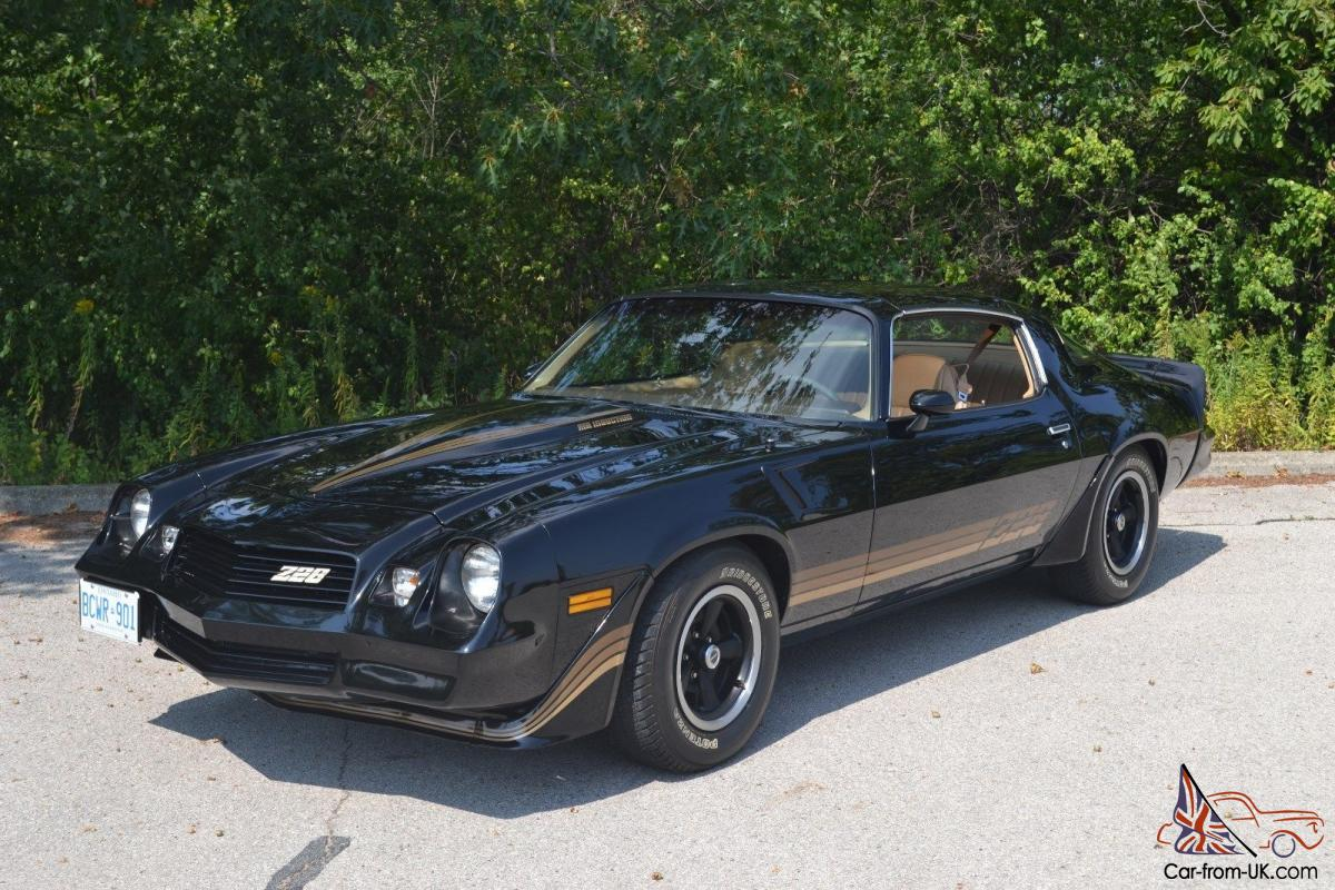 1981 chevrolet camaro z28 ebay. Black Bedroom Furniture Sets. Home Design Ideas