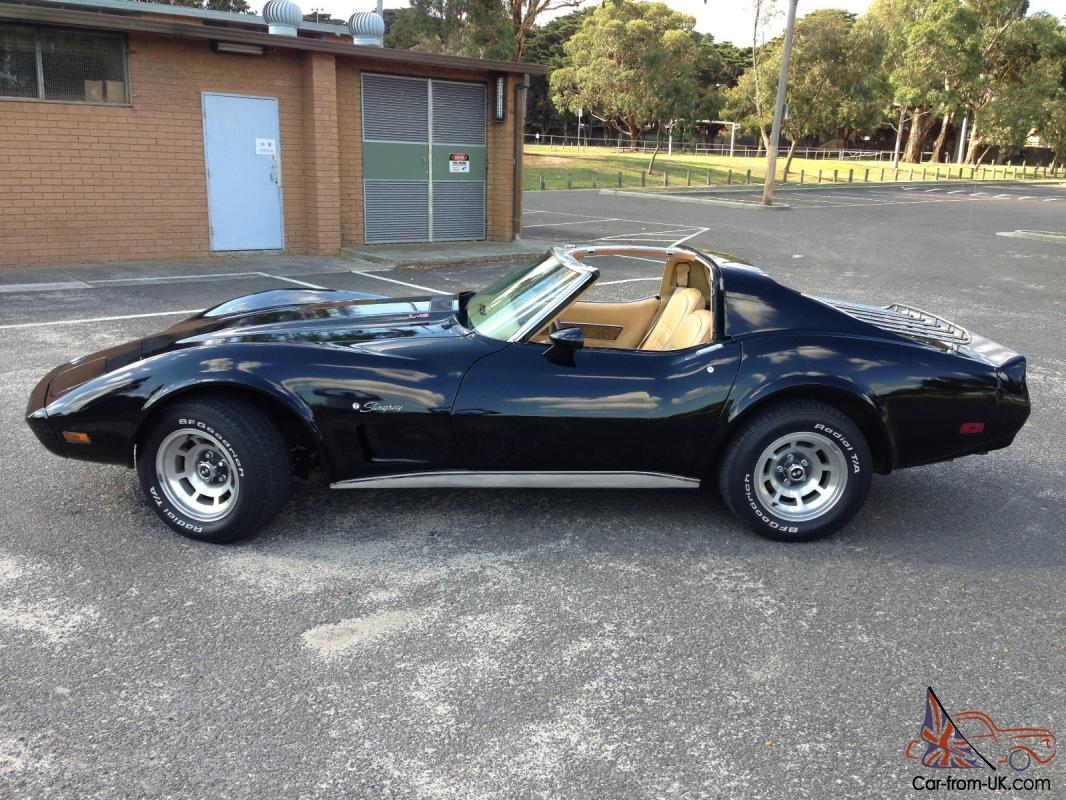 1976 corvette stingray. Cars Review. Best American Auto & Cars Review
