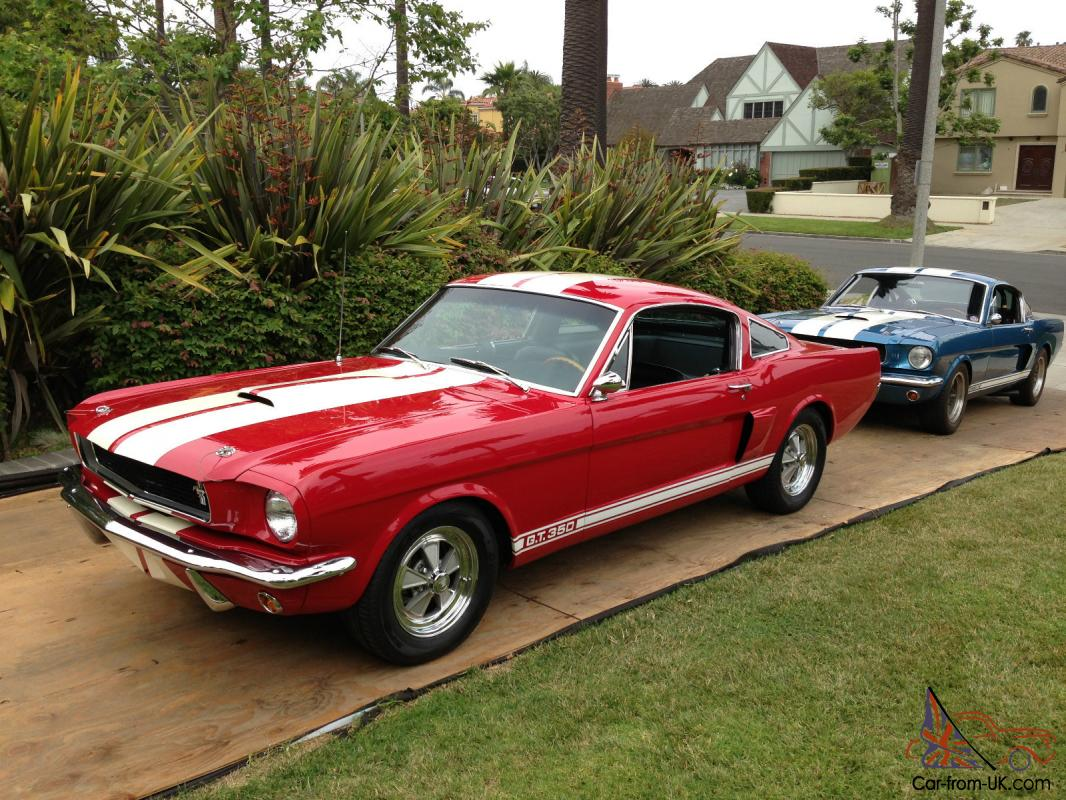 66 shelby gt350 for autos post. Black Bedroom Furniture Sets. Home Design Ideas
