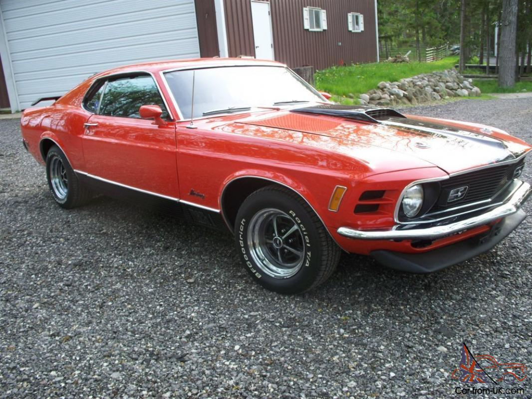 1970 mustang mach 1 shelby eleanor boss project car. Black Bedroom Furniture Sets. Home Design Ideas