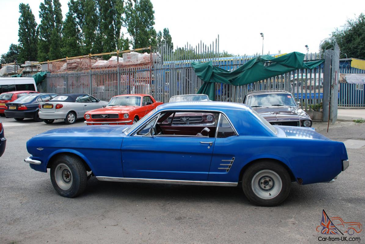 project mustangs for sale