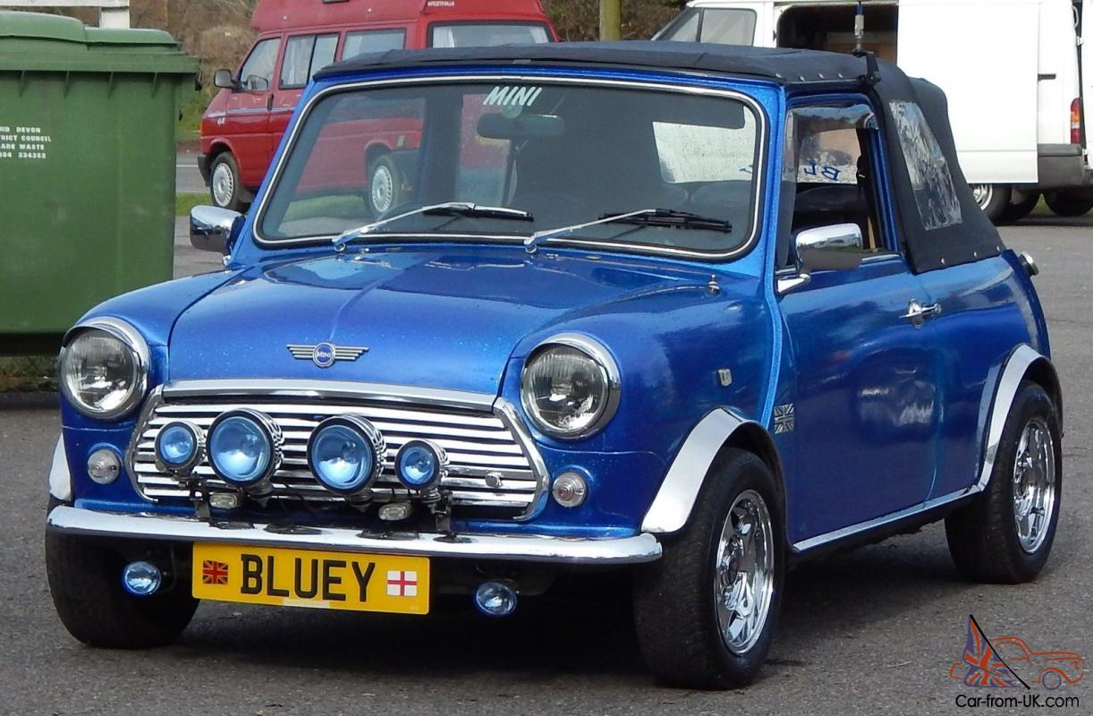 Bluey Rover Mini And Trailer Unique Something Diiferent For The