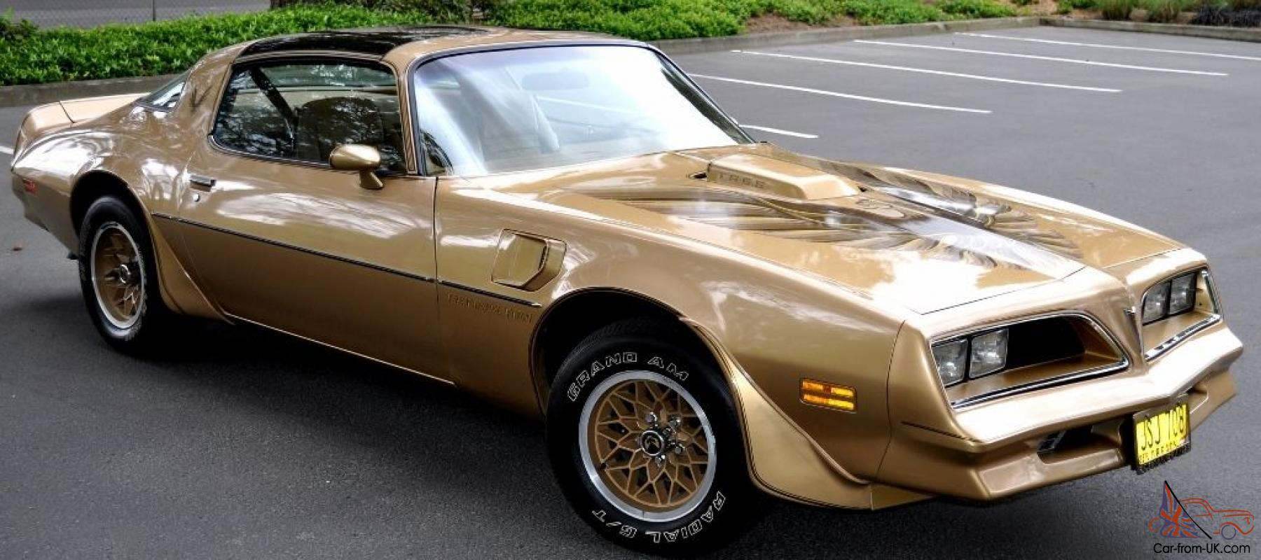 New Trans Am 2014 For Saleml page privacy Statement