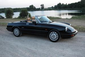 Alfa Romeo Spider for Sale