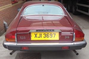 Classic Jaguar XJS 3.6 Photo