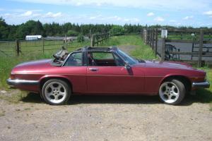 Jaguar XJS C HE