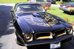 1976 Pontiac Special Edition Trans-Am