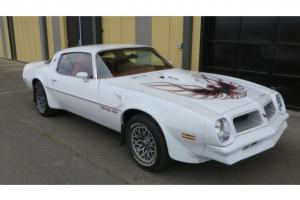 1976 PONTIAC TRANS AM TA 455 HO 4 SPEED REAL CLEAN!