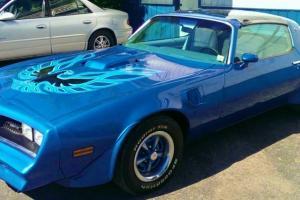 Pontiac : Trans Am Firebird Trans AM Photo