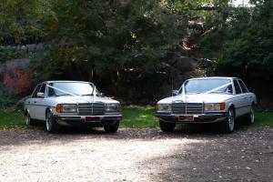 Mercedes BENZ1974W116 280SE 1978W123 280E Turbo Wedding CAR Business Opportunity