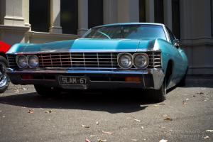 Impala Fastback Photo