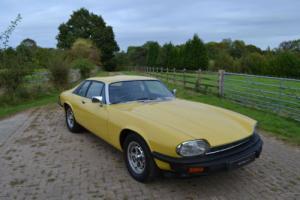 1979 Jaguar XJS V12