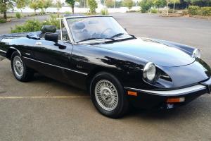 1989 alfa romeo graduate  095930 original miles 2 owner