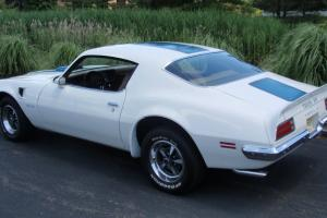 White with Blue Stripes, Saddle Interior