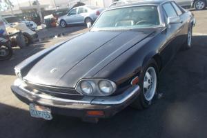 Jaguar : XJS 2DR COUPE