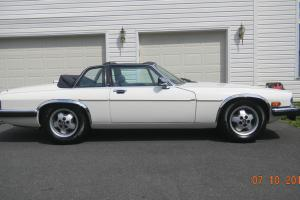 Jaguar : XJS XJS-C