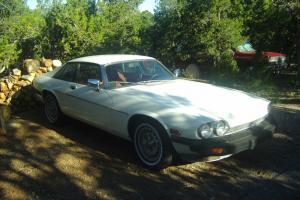 Jaguar : XJS XJS