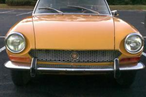 Fiat : Other Spider