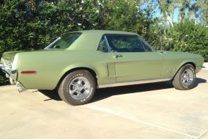 Ford : Mustang stainless Photo