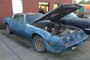 Pontiac : Trans Am Firebird Trans Am