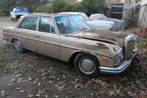 Mercedes-Benz : Other GOLD /BLACK