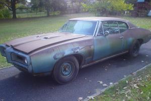 Pontiac : GTO GTO Photo