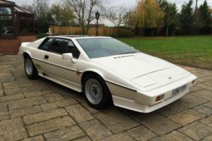 1985 C Reg Lotus Esprit 2.2 Turbo Pearl White