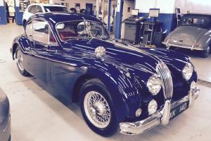 Jaguar : XK Fixed Head Coupe