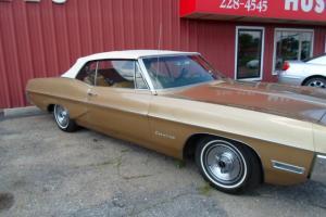 Pontiac : Catalina gold