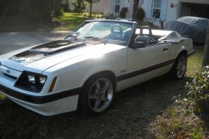 Ford : Mustang GT Photo