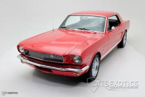 Ford : Mustang Photo
