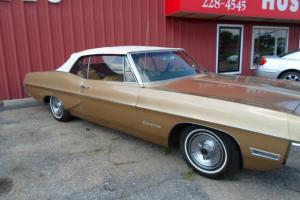 Pontiac : Catalina gold
