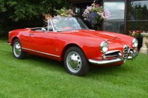 1963 Alfa Romeo Giulia 101 Series 1600 Spider