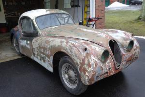 Jaguar : XK none