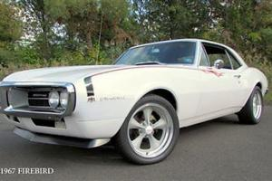 Pontiac : Firebird Custom