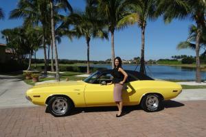 Dodge : Challenger 1970 DODGE CHALLENGER