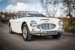 1960 Austin Healey 3000 Mk1 BT7 - White With Red Trim - Fabulous Throughout