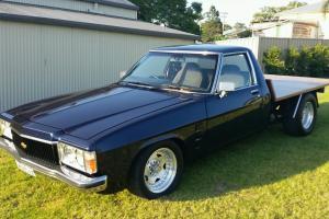 HZ Holden 1980 in Shortland, NSW