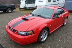 Ford : Mustang 40TH ANNIVERSARY EDITION
