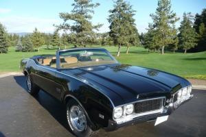 Oldsmobile : 442 Photo