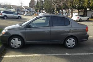 Toyota : Echo Grey