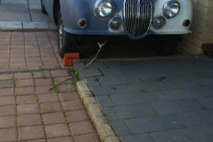 Jaguar MK II 3 4 1960 4D Sedan Manual 3 4L Carb Seats in Kinross, WA