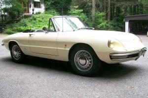 Alfa Romeo : Other ROUND TAIL